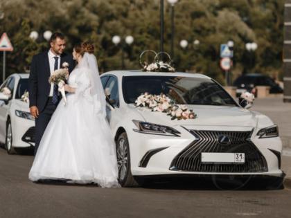 Свадебные машины. Прокат машин на свадьбу Lexus LS и Toyota Camry. Авто на свадьбу Белгород. Аренда лимузинов. Лимузин Белгород.